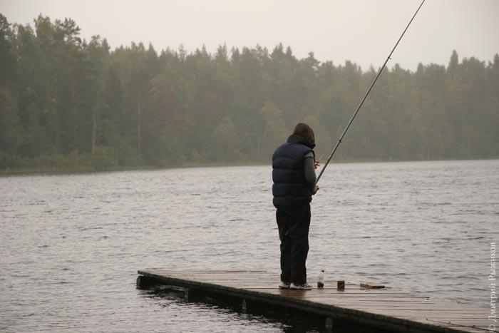как рыба клюет в дождь
